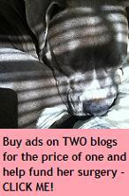 BOGO Ad Sale